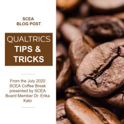 SCEA Blog Post_Qualtrics CB July 2020